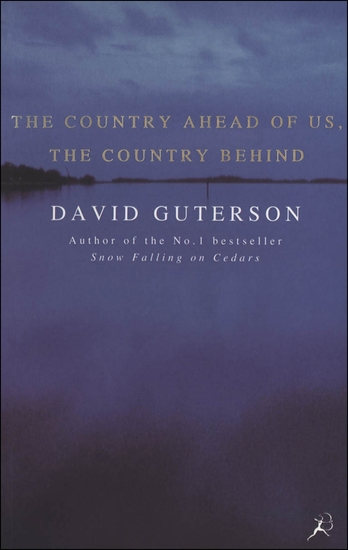 The Country Ahead of Us the Country Behind - cover
