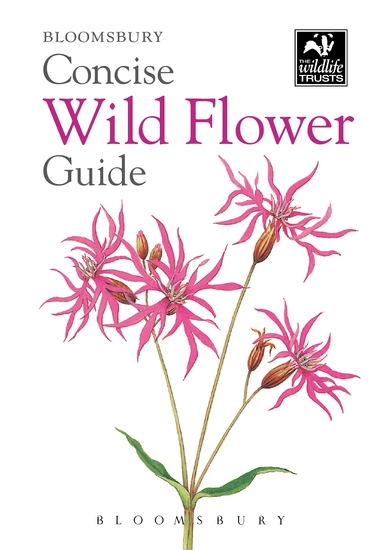 Concise Wild Flower Guide - cover