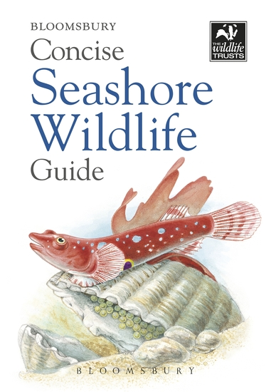 Concise Seashore Wildlife Guide - cover