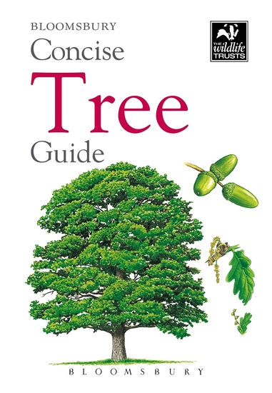 Concise Tree Guide - cover