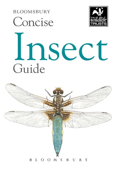 Concise Insect Guide - cover