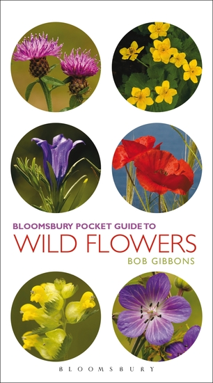 Pocket Guide To Wild Flowers - cover
