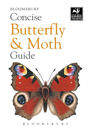 Concise Butterfly and Moth Guide - cover