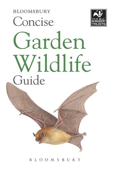 Concise Garden Wildlife Guide - cover