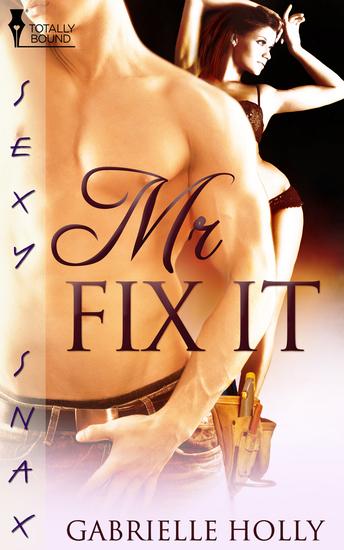 Mr Fix-It - cover