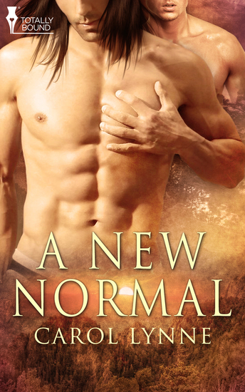 A New Normal - cover
