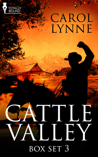 Cattle Valley Box Set 3 - cover