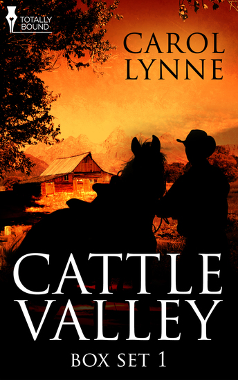 Cattle Valley Box Set 1 - cover