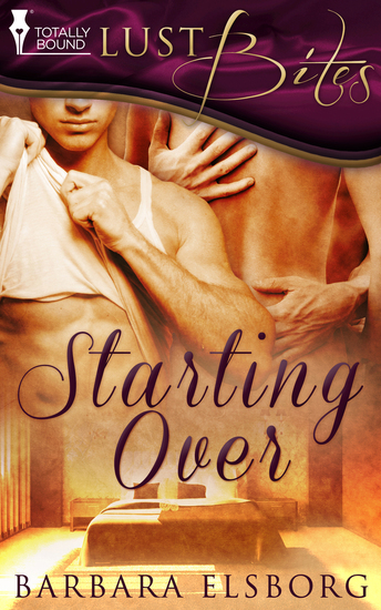 Starting Over - cover