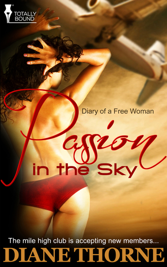 Passion in the Sky - cover