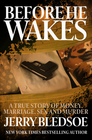 Before He Wakes - A True Story of Money Marriage Sex and Murder - cover