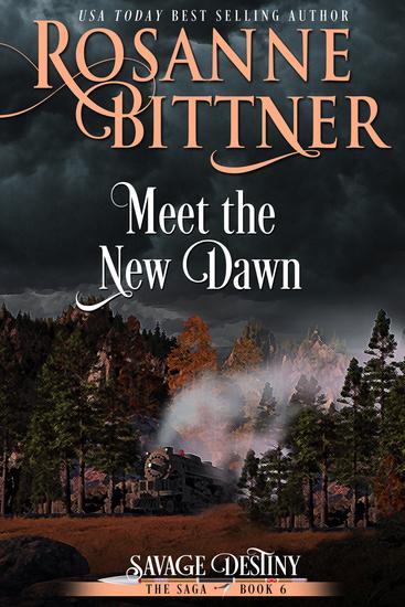 Meet the New Dawn - cover