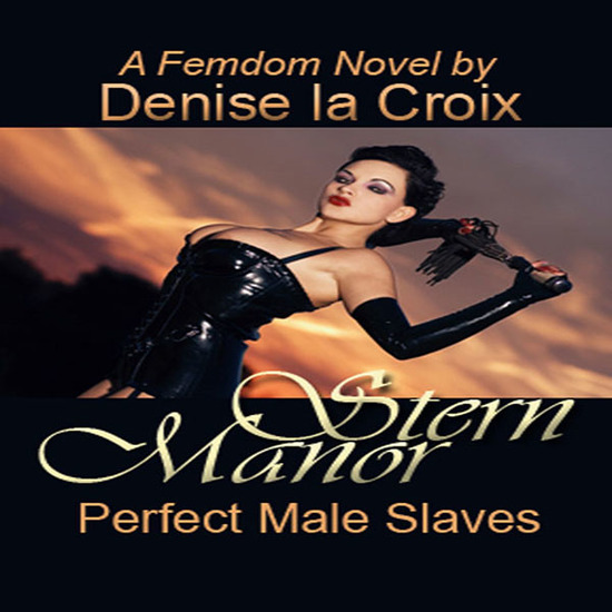 Stern Manor: Perfect Male Slaves - cover