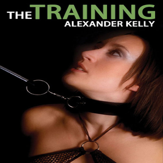 The Training - cover