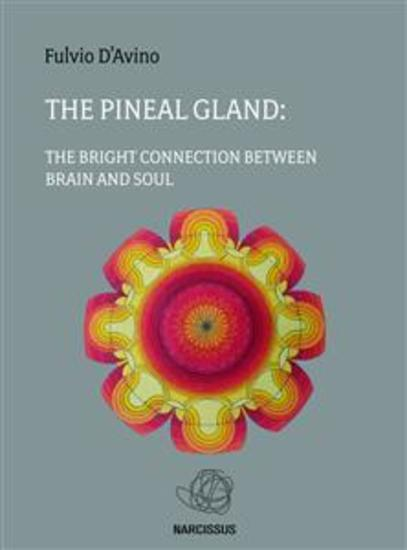 The pineal gland - cover