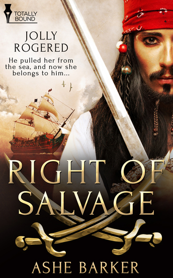 Right of Salvage - cover