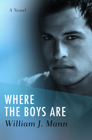 Where the Boys Are - A Novel - cover