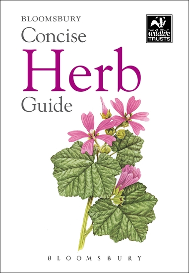 Concise Herb Guide - cover