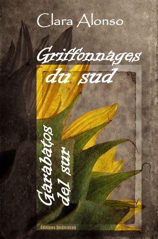 Griffonnages du sud - Garabatos del sur - cover