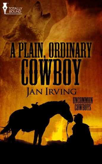 A Plain Ordinary Cowboy - cover