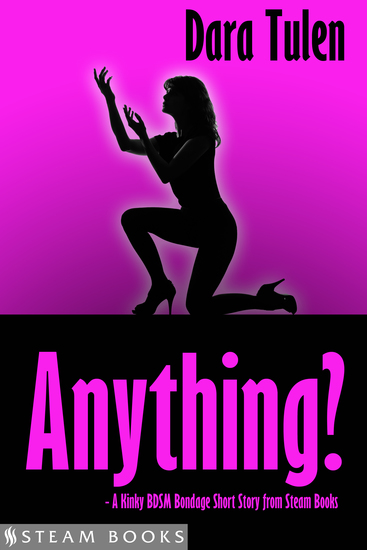 Anything? - A Kinky BDSM Bondage Short Story from Steam Books - cover