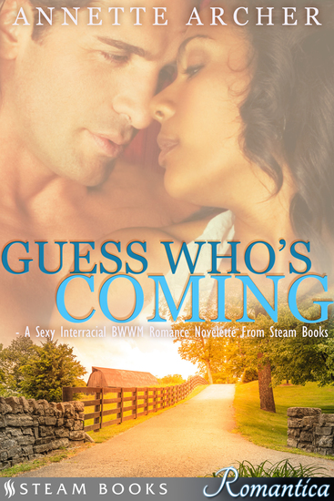 Guess Who's Coming - A Sexy Interracial BWWM Romance Novelette From Steam Books - cover