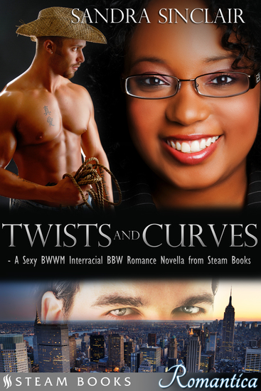 Twists and Curves - A Sexy BWWM Interracial BBW Romance Novella from Steam Books - cover
