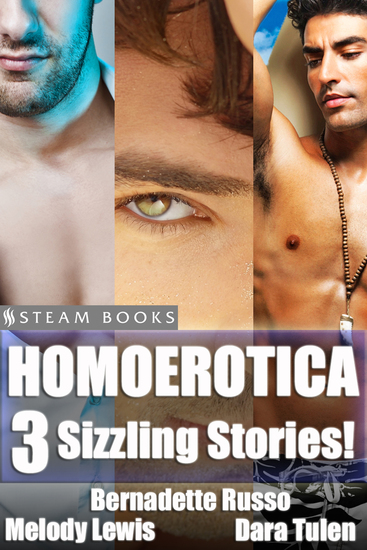Homoerotica - A Sexy Bundle of 3 Gay M M Erotic Stories from Steam Books - cover