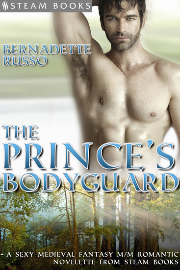 The Prince's Bodyguard - A Sexy Medieval Fantasy M M Romantic Novelette from Steam Books - cover