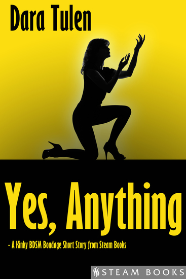 Yes Anything - A Kinky BDSM Bondage Short Story from Steam Books - cover