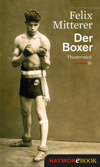 Der Boxer - Theaterstück - cover