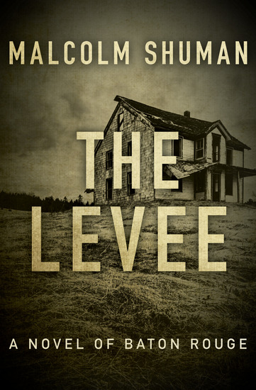 The Levee - A Novel of Baton Rouge - cover