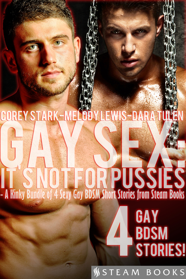 Gay Sex: It's Not For Pussies - A Kinky Bundle of 4 Sexy Gay BDSM Short Stories from Steam Books - cover