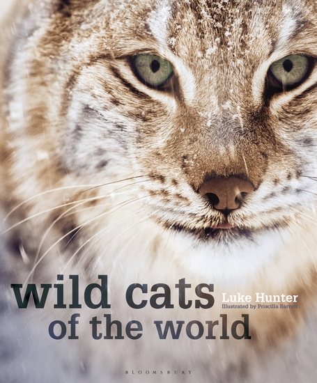 Wild Cats of the World - cover