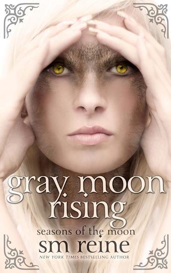 Gray Moon Rising - Seasons of the Moon #4 - cover
