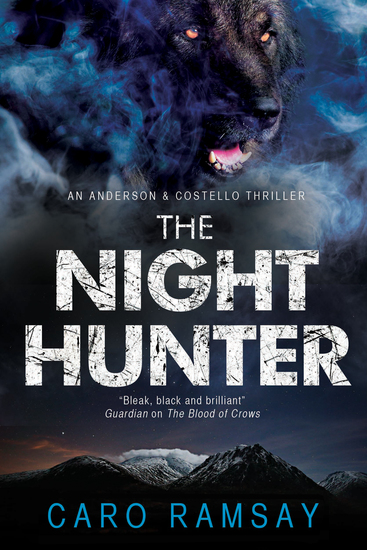The Night Hunter - An Anderson & Costello police procedural set in Scotland - cover