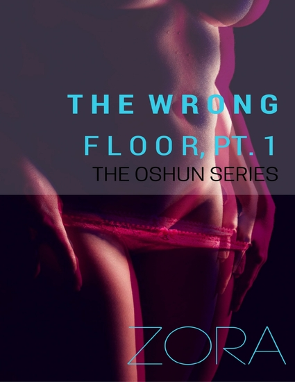 The Wrong Floor Pt 1 - The Oshun Series - cover