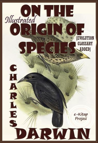 origin of species essays