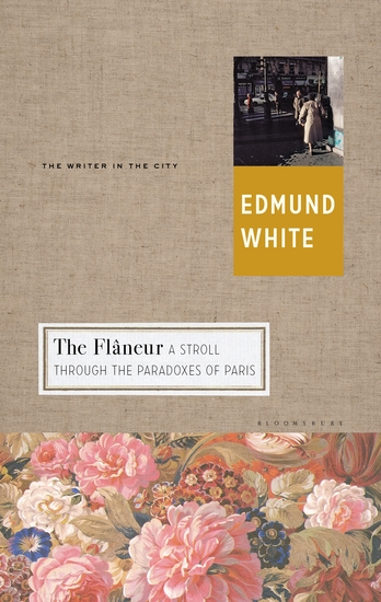The Flaneur - A Stroll through the Paradoxes of Paris - cover