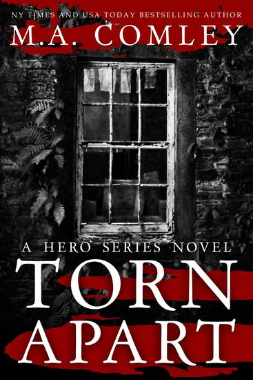 Torn Apart - Hero Series - cover