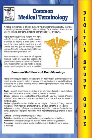 Common Medical Terminology ( Blokehead Easy Study Guide) - The Blokehead Success Series - cover