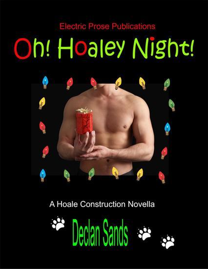 Oh! Hoaley Night! - HOALE CONSTRUCTION NOVELLAS #1 - cover