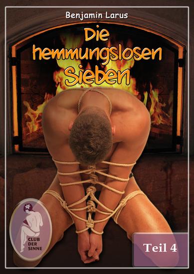 Die hemmungslosen Sieben (Teil 4) - cover