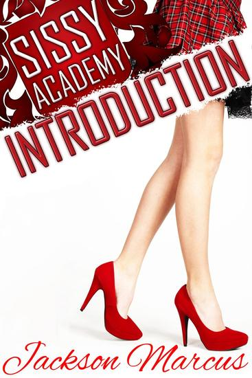 Sissy Academy Introduction - cover
