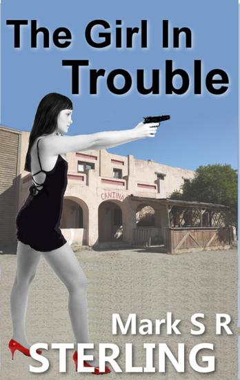 The Girl In Trouble - Paige Turner Affair #3 - cover