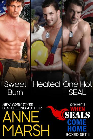 When SEALs Come Home Boxed Set II: Three Book SEAL Military Romance Collection - When SEALs Come Home - cover