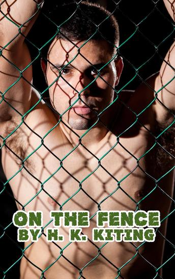 On the Fence - cover