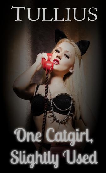 One Catgirl Slightly Used - cover