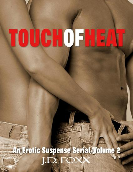 Touch of Heat 2 - Touch of Heat Erotic Suspense Serial #2 - cover