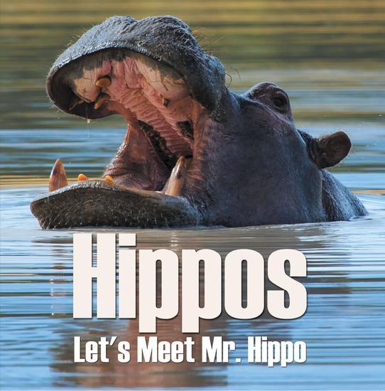 Hippos - Let's Meet Mr Hippo - Hippo Books for Children - cover
